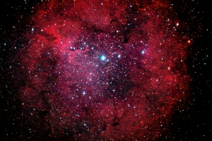 elephant-trunk-26jun14-cssp-best-combo-supressed-stars